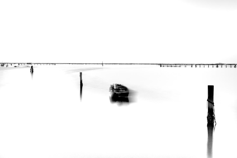barricata-scardovari-009