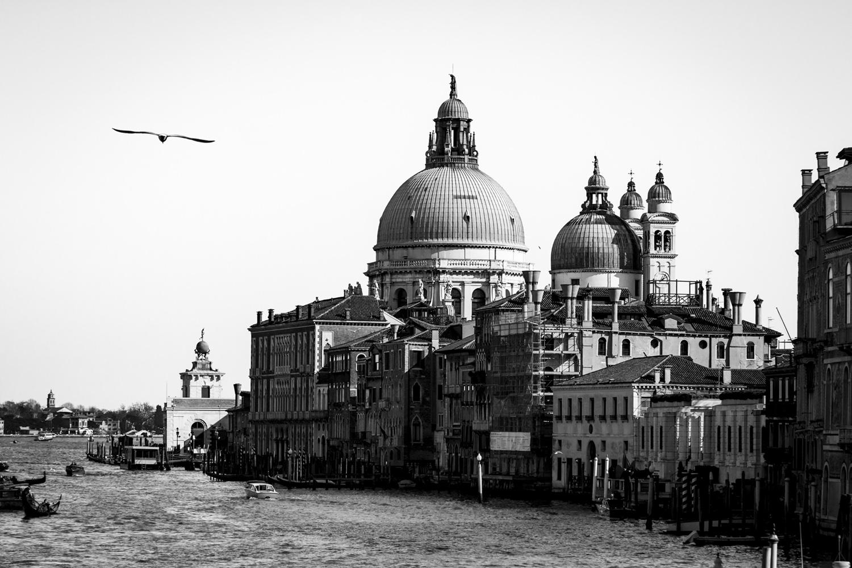venezia-bianco-e-nero-art